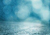 По данным Томского ЦГМС, во вторник, 18 мая, в Томской области пройдут кратковременные, местами сильные дожди