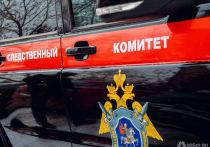 Следственный комитет проверит информацию о содержании в Белове детей в антисанитарии
