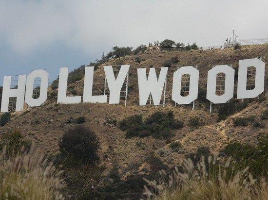 СМИ: корпорация Amazon может купить киностудию Metro-Goldwyn-Mayer