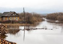 По информации пресс-службы ГУ МЧС России по Томской области, во время паводка в Томской области оказались подтоплены 17 приусадебных участков