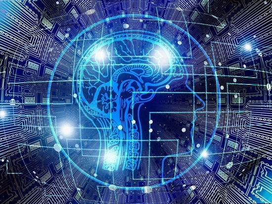 «Умные материалы» позволят лучше изучить человеческий мозг