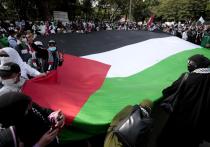 На фоне конфликта между Израилем и сектором Газа возник довольно необычный феномен: в арабском мире впервые отсутствует единение по поводу палестино-израильского противостояния