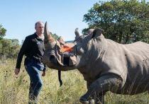 Госкорпорация Росатом стала партнером инновационного антибраконьерского проекта «Rhisotope Project» (производная от английских слов «носорог» (rhino) и «изотоп» (isotope), который стартовал 13 мая