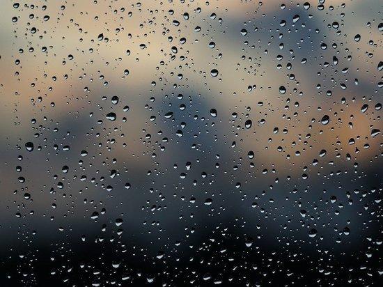 В Томске 19 мая ожидается ветреная и дождливая погода