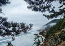 Лесные посёлки на Байкале могут узаконить