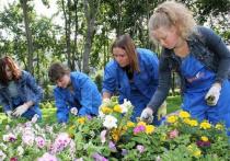 Ивановским подросткам предлагают трудоустроиться на лето