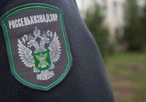 В Ивановской области владелец 78 гектаров земли проигнорировал требования Россельхознадзора