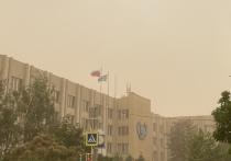 Пыльная буря небывалых размеров, которая 19 мая обрушилась на Астраханскую область, стала катализатором многих проблем