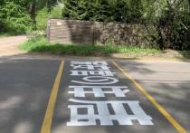 «Китайскую грамоту» прямо на дорожном полотне изобразили неизвестные художники в поселке Кратово Раменского городского округа