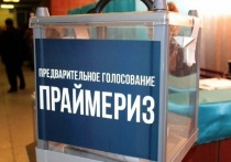 Группа депутатов Госдумы выступила против праймериз