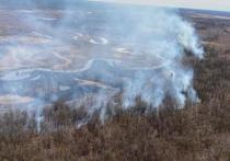 На 21 мая в Якутии действуют десять лесных пожаров