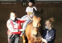 Ивановская спортшкола №11 в подарок на 90-летний юбилей получила кобылу