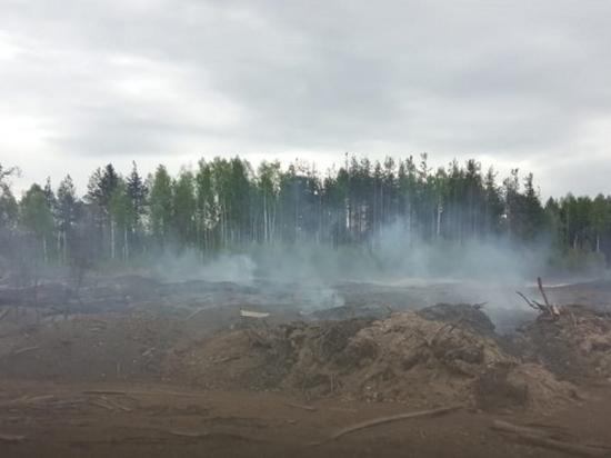 На окраине Няндомы горела свалка отходов лесопиления