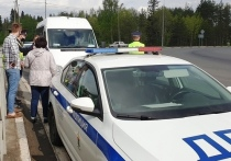 В столице Карелии задержали маршрутчика-нелегала