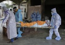 Американское издание Project Syndicate выпустило материал, в котором говорится, что ведущие страны стараются не замечать невиданное по масштабу гуманитарное бедствие, которое происходит в связи с распространением коронавируса в Южной Азии