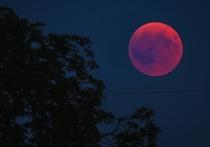 Лунное затмение 26 мая 2021: почему его называют кармическим и что нельзя делать