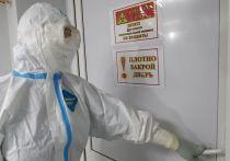 На Кубани за минувшие сутки выявили 97 новых случаев заболевания COVID-19