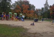 В Петрозаводске может появиться детская площадка для особенных детей