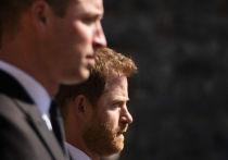 Названо невыполнимое условие примирения принцев Гарри и Уильяма