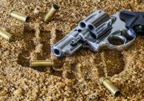 Торговец оружием выжил после отравления «Новичком»