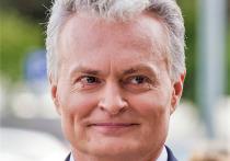 Президент Литвы потребовал освободить задержанного в Минске Протасевича