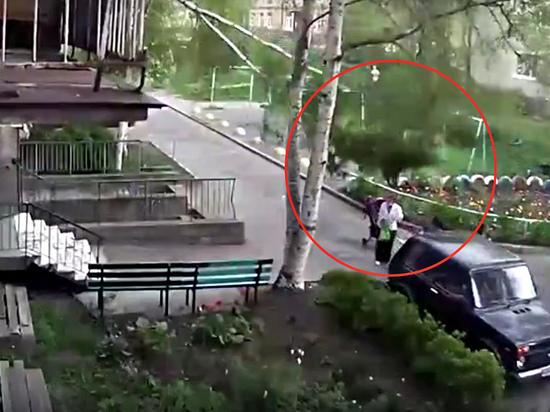 Дерево упало на женщину во дворе жилого дома в Петрозаводске