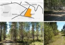 Наталья Комарова призвала югорчан поддержать проект создания экотропы в Урае