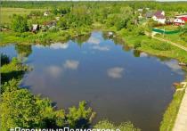Несколько прудов почистят в Серпухове