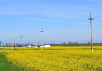 500 новых потребителей обеспечены электроэнергией в адыгейском энергорайоне