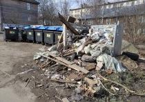 В Петрозаводске нашли поджигателя мусорных контейнеров