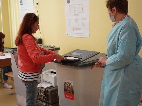 Общественная палата Петербурга подготовит к выборам восемь тысяч наблюдателей