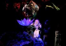 Астраханский театр кукол принимает участие в международном фестивале в Махачкале
