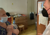 Участники «Молодежки ОНФ» в Воронеже вместе с замруководителя Исполкома ОНФ Игорем Кастюкевичем продолжают помогать одиноким пенсионерам и пожилым людям с ограничениями здоровья