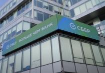 В Челябинске завершается регистрация на Зеленый марафон Сбера