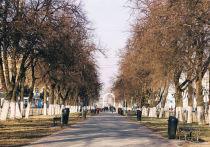 Новый порядок подтверждения иностранцами знаний русского языка, ужесточение контроля за иностранными перевозчиками, раскрытие причин отказа в «ипотечных каникулах»