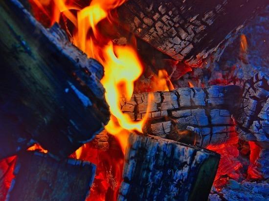 За разведение костров в лесах Карелии будут штрафовать