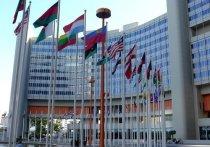 МИД Израиля отверг резолюцию Совета ООН по правам человека в Палестине