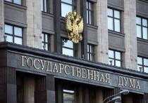 В Госдуме назвали хамством слова первого зампреда ЦБ о повышении зарплат