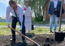 В селе Байны городского округа Богданович появилась «Аллея выпускников»