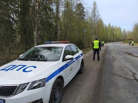 В субботу дорожные полицейские Петрозаводска проведут очередной рейд