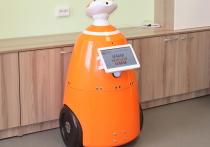 В Кировской области робот заменил библиотекаря