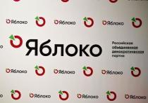 Ярославское «Яблоко» поделило округа