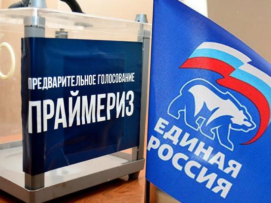 Предварительное голосование «Единой России» в Ростовской области: онлайн-трансляция, явка, новости