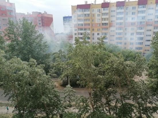 В микрорайоне Чурилово в Челябинске горит тополиный пух