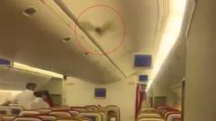 Вылетевший из Нью-Дели самолет срочно вернулся обратно из-за летучей мыши