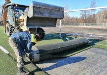 Школы Петрозаводска готовы забрать демонтированный со стадиона «Юность» газон