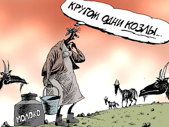 В Курской области разгораются бои за землю
