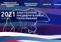 Праймериз «Единой России» в Туле прошел без сюрпризов