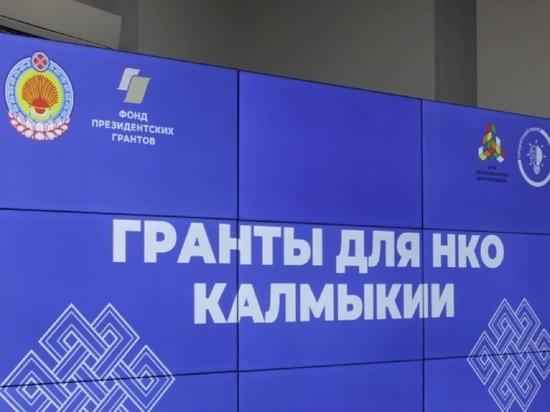 Некоммерческие организации Калмыкии могут претендовать на президентские гранты