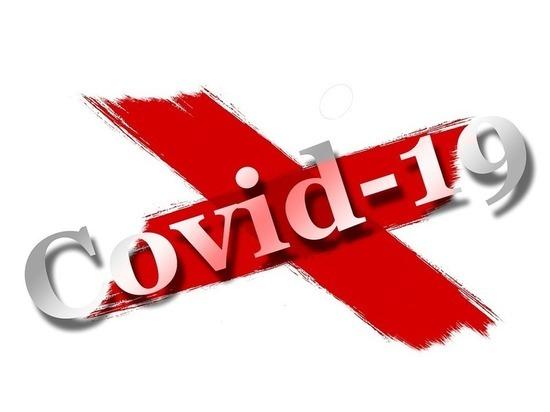 1 июня: в Германии 1.785 новых случаев заражения Covid-19, 153 умерших за сутки